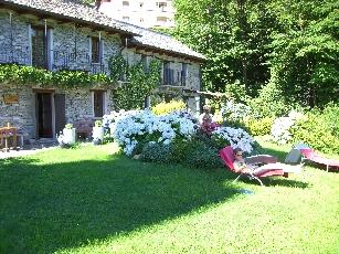 Garten4