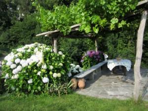 Garten der Casetta im Juni